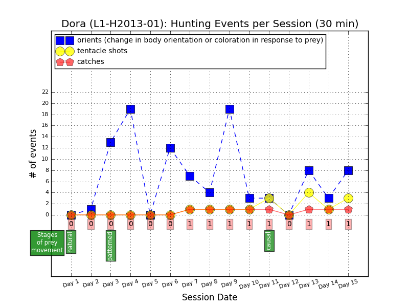 Hunting events by L1-H2013-01, aka Dora