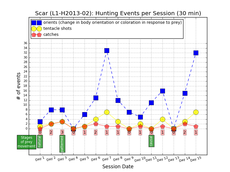 Hunting events by L1-H2013-02, aka Scar