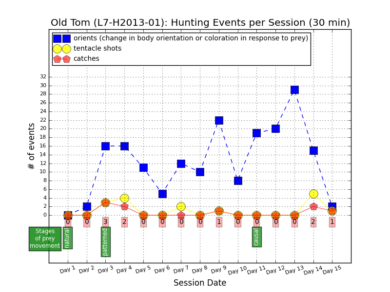 Hunting events by L7-H2013-01, aka Old Tom