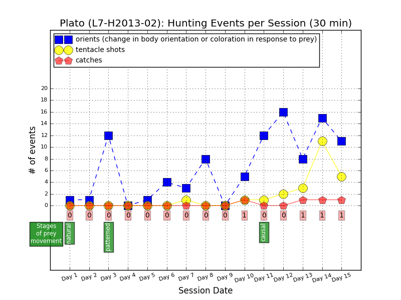 Hunting events by L7-H2013-02, aka Plato
